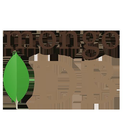 Mongo DB Database Management